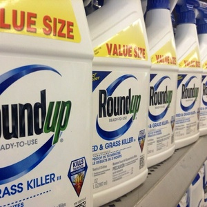 Trump sauve Monsanto