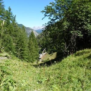 Vivre bio en randonnée