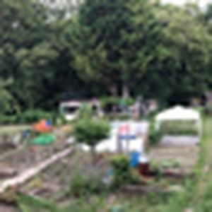 Pétition : sauvons les Jardins des Vertus