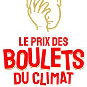 Prix des boulets du climat